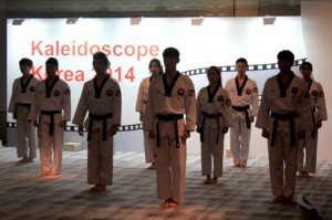K - Tiger from Korea - form of performing arts combining taekwondo movements and music