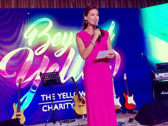Stephanie Bovis hosts The Yellow Ribbon Charity Gala