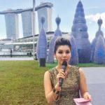 iLight Marina Bay Launch Ceremony 2017